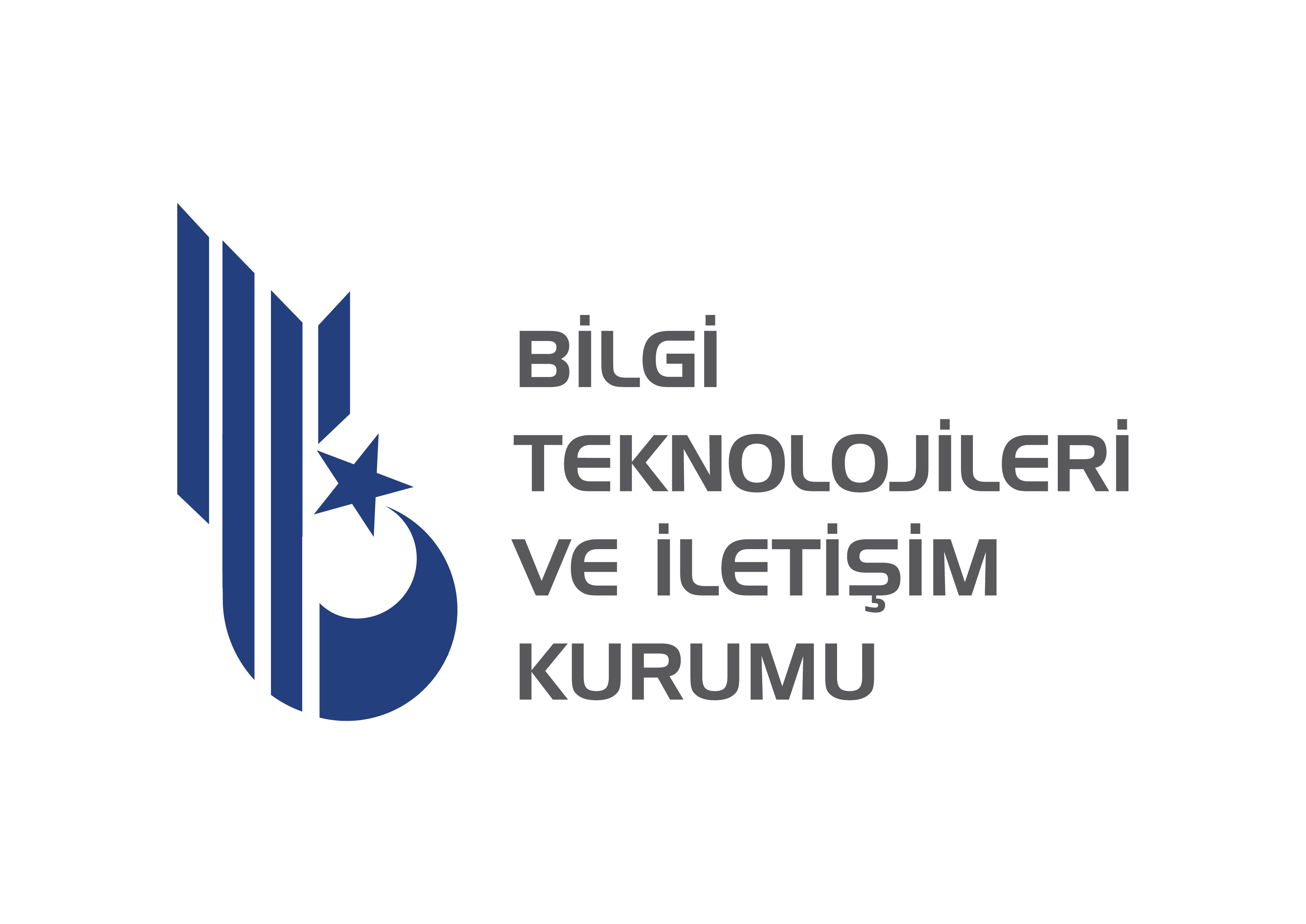 Bilgi teknolojileri logo