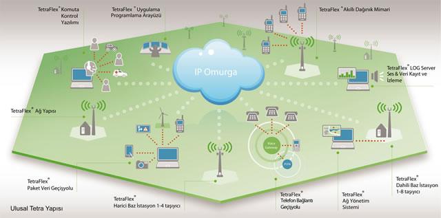 Tetra Network Components